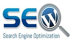 فیلم های آموزشی سئو وردپرس WordPress SEO