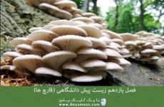 فصل یازدهم زیست پیش دانشگاهی (قارچ ها)