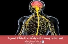 فصل دوم زیست و آزمایشگاه 2 (دستگاه عصبی)