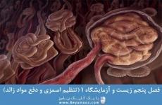 فصل پنجم زیست و آزمایشگاه 1 (تنظیم اسمزی و دفع مواد زائد)