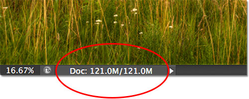 The current file size of the image as displayed in the document window. Image © 2012 Steve Patterson, Photoshop Essentials.com