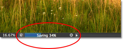The save progress bar in the document window in Photoshop CS6. Image © 2012 Steve Patterson, Photoshop Essentials.com