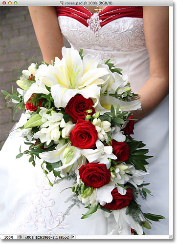 A bride holding a bouquet with red roses. Image © 2012 Photoshop Essentials.com