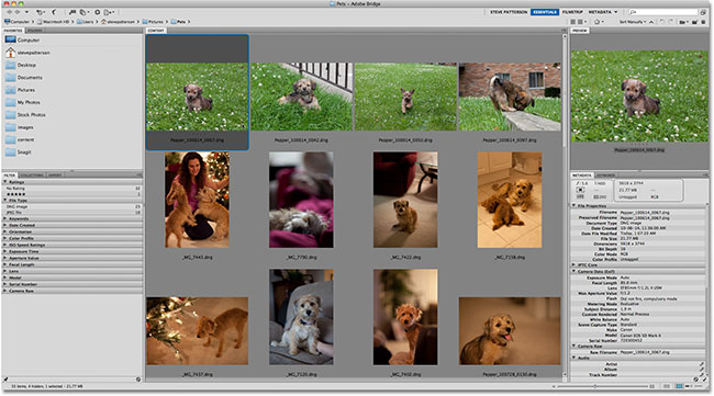 Adobe Bridge CS5. Image © 2011 Photoshop Essentials.com.