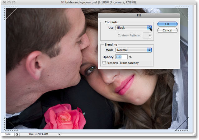 The Fill dialog box opens once again when Photoshop reaches the second Fill step in the action. Image copyright © 2008 Photoshop Essentials.com