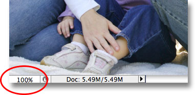 Changing the zoom level to 100% in the bottom left corner of the document window. Image © 2009 Photoshop Essentials.com.