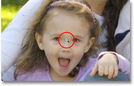 The Zoom Tool in 'zoom out' mode. Image © 2009 Photoshop Essentials.com.