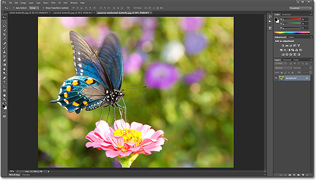 Three photos opened as tabbed documents in Photoshop CS6. Image licensed from Shutterstock by Photoshop Essentials.com