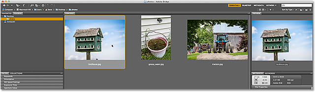 Adobe Bridge CC. Image © 2013 Steve Patterson, Photoshop Essentials.com