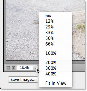 The Zoom options, including zoom presets, in the lower left of the Camera Raw dialog box. Image © 2013 Photoshop Essentials.com