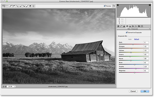 The initial black and white conversion in the Camera Raw filter. Image © 2014 Photoshop Essentials.com