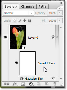 The Layers palette in Photoshop CS3 showing my Gaussian Blur smart filter.