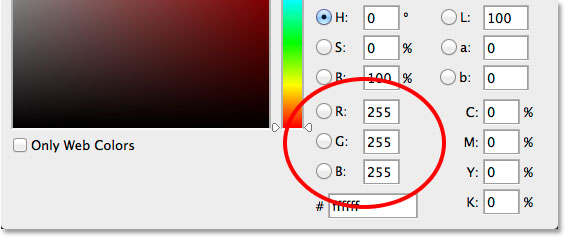 Choosing white for the type color in the Color Picker.