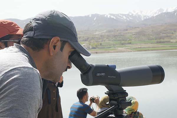 برپایی نمایشگاه عکس و تور رایگان پرندهنگری در زریبار کردستان